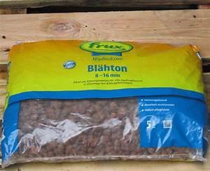 Grüne Kügelchen In Blumenerde : bl hton k gelchen f r pflanzen ~ Lizthompson.info Haus und Dekorationen