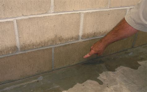 Basement Waterproofing Costs Estimated Costs To Fix A, Wet. How Do You Get Rid Of Spiders In Your Basement. How Much To Finish My Basement. Basement Windows With Dryer Vent. Country Home Plans With Walkout Basement. Basement Sump Pump. Flooring On Concrete Basement. Lowes Dehumidifiers For Basements. How To Get Rid Of Sow Bugs In Basement