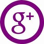 Google Plus Icon Pink Icons Gray Purple