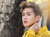 Zhang Ruoyun Chinese Actor 2017, Full HD Wallpaper