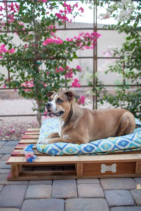 easy diy outdoor dog pallet bed  joyfully mad kitchen