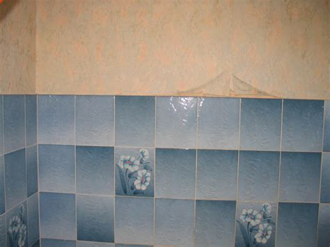 carrelage mural salle de bain forum revetements muraux