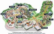 Inaugural 5K Minion Run at Universal Studios Hollywood ...