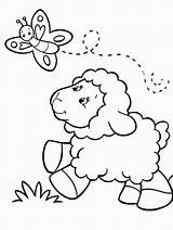 Coloring Sheep Popular sketch template