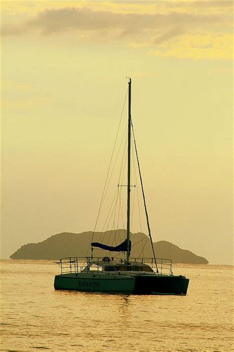 Catamaran Rides In Puerto Rico by 228 Best Puerto Rico Images On Pinterest Puerto Ricans