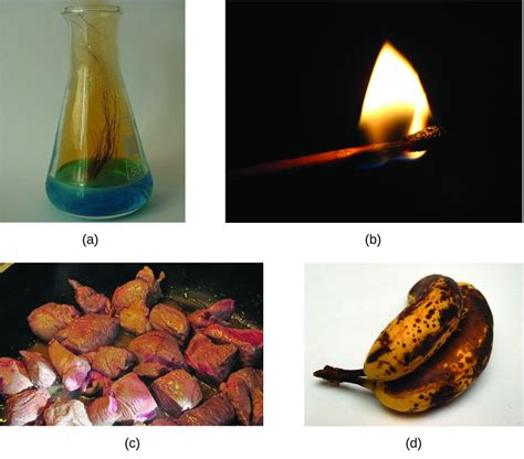 chemical physical change chemistry properties copper burning liquid nitrate meat chem gas shows being acid
