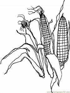 Corn Stalk Coloring Pages - Coloring Home