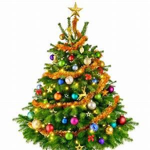 Weihnachtsbaum Mit Rosa Kugeln : weihnachtsbaum schm cken so wird weihnachten prunkvoll ~ Orissabook.com Haus und Dekorationen
