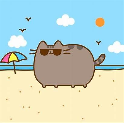 Pusheen Cat Wallpapers Kawaii Beach Cats Summer