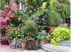 Potted Plant Ideas for Good Gardening Activity Home