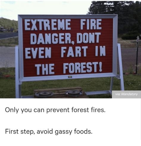 Only You Can Prevent Forest Fires Meme - extreme fire danger dont even fart in the forest via mandatory only you can prevent forest fires