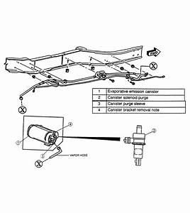Wiring Diagram Database  2000 Chevy Blazer Evap System Diagram