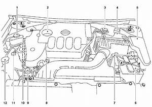 Nissan Altima  Engine Compartment Check Locations