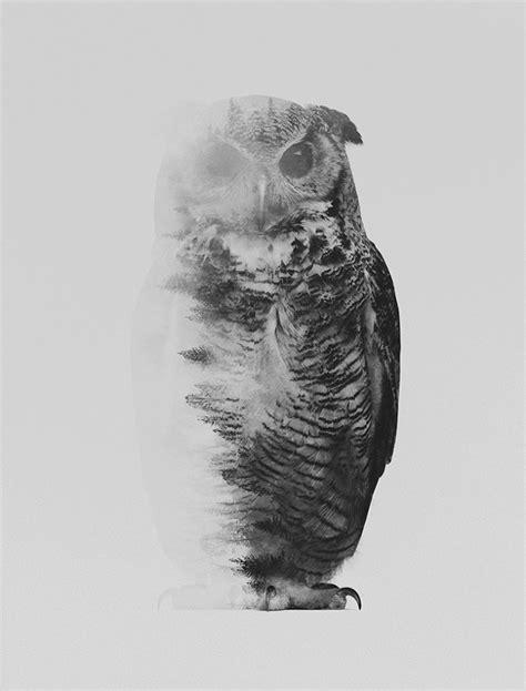Black & White - Andreas Lie