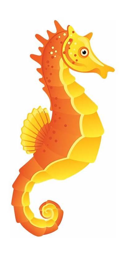 Seahorse Clipart Clip Sea Horse Cartoon Clipartix