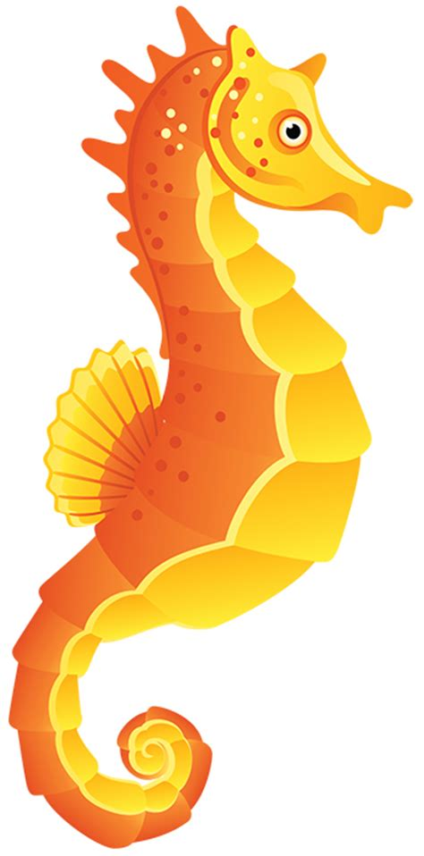 Image result for Seahorse Clip Art