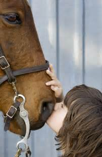 horse boy film rowan independent rufus nose lovett lens wxxi horses kiss therapy documentary credit pbs its interactive highlights