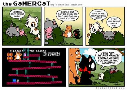 Gamercat Comics Cat Comic Funny Gamer Kong
