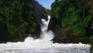 Find and reach falls lake insurance companies' employees by department, seniority, title, and much more. Murchsion Falls - Jothado Safaris Limited