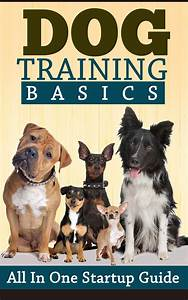 Dog Training Basics: All in One Startup Guide Review