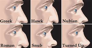 Here U2019s What The Shape Of Your Nose Reveals About Your Personality