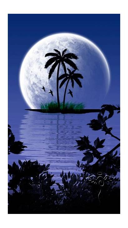 Moon Palm Trees Nature Triangle Fully Night