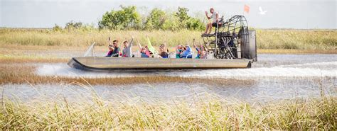 Everglades Boat Tours Alligators by Florida Airboat Rides At Gator Park Everglades Airboat