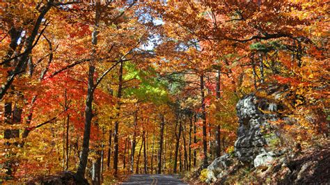 best fall colors state by state guide to the best fall color southern living