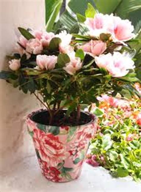 diy flower pots old things into flower pots and planters diy and crafts