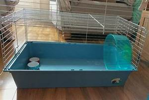 7 Essentials to set up a hedgehog cage [Hedgehog cage ...