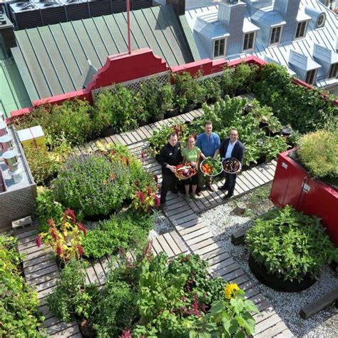 les 25 meilleures id 233 es de la cat 233 gorie terrasse sur le toit sur toit terrasse et
