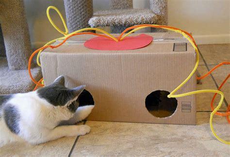 jouet pour chat fait maison amuser le chat jeux fait soit meme