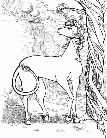 Coloring Pages Unicorn Realistic Adults Printable Forest