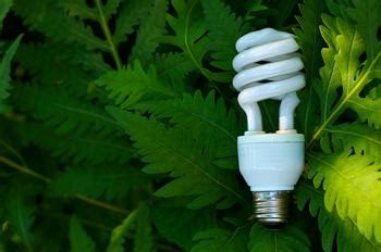 home depot recycles compact fluorescent bulbs
