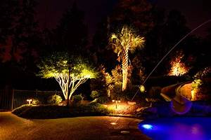 Low voltage landscape lighting tropical pool
