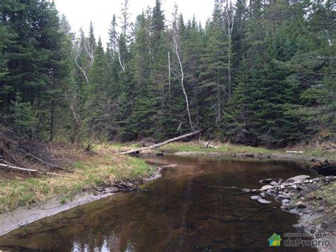 terre a bois a vendre lanaudiere terre 224 bois vendu l ascension immobilier qu 233 bec