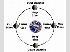 Astronomical Data NOAA Tides & Currents