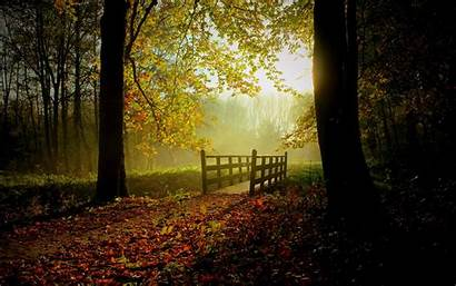 Sunny Fall Wallpapers 1920 1200 1440 1600