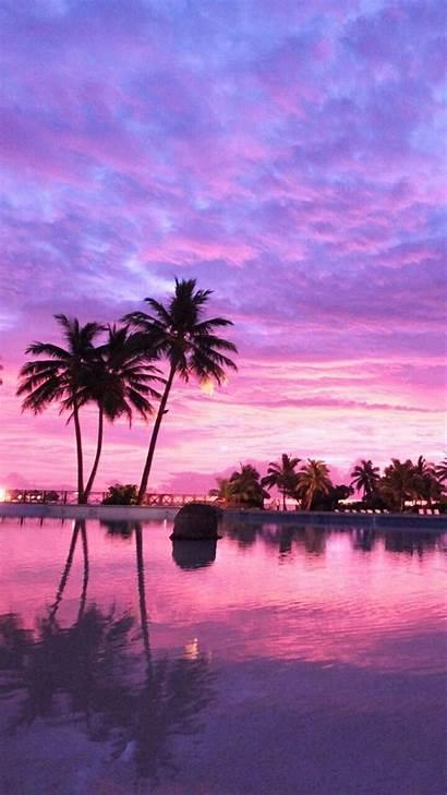 Pink Sunset Screen Wallpapers Minionswallpaper