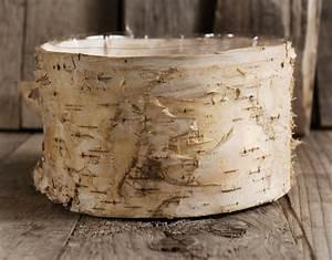 Birch, Bark, Planter, Pot, 6, 5x, 3, 5, Inch