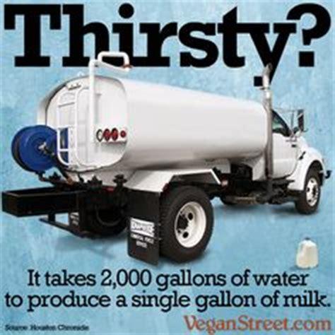 Big Milk Meme - 1000 images about vegan memes on pinterest vegans vegan quotes and memes