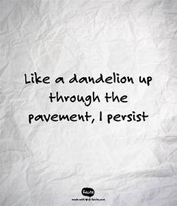 Like a dandelio... Pavement Quotes