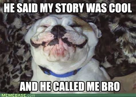Cool Dog Meme - funny outrageous memes and photos september 2013