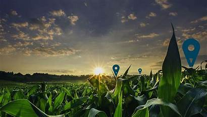 Agriculture Digital Accenture Wallpapers Solutions Service Data