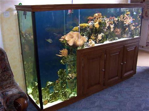 aquarium eau de mer maison