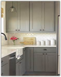 Ikea Stainless Kitchen Cabinets by French Gray Kitchen Cabinets Home Design Ideas