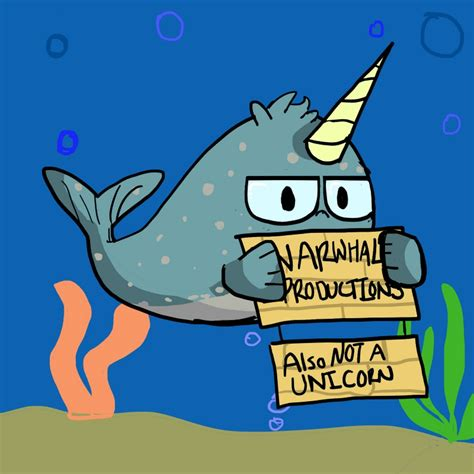 narwhal productions youtube