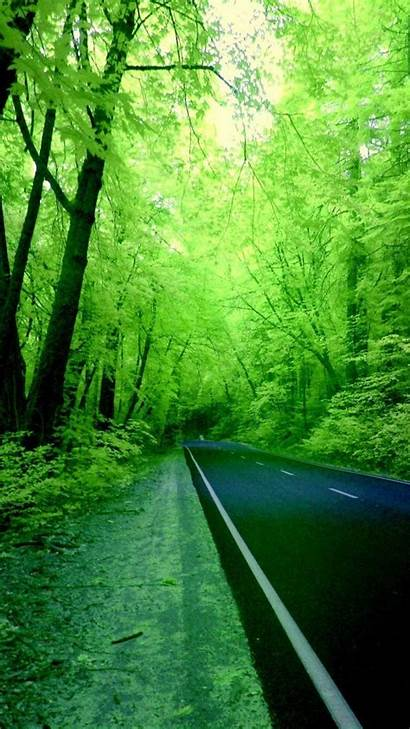 Nature Mobile Wallpapers Forests Roads