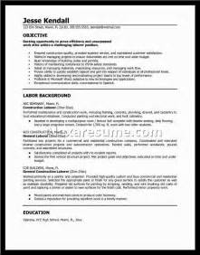 resume summary exles for it professionals 20 professional summary exles for resumealexa document document