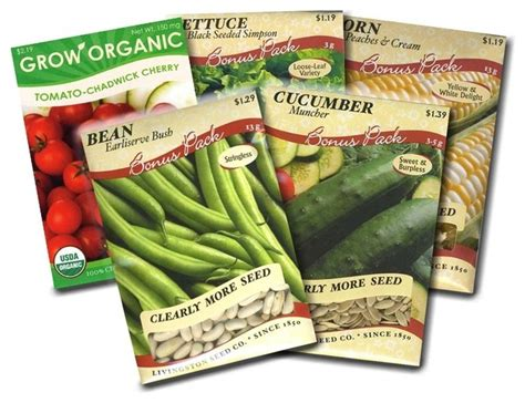 Garden Vegetable Seed Packets Corn, Bean, Cucumber